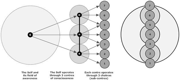 system sequence diagram true false