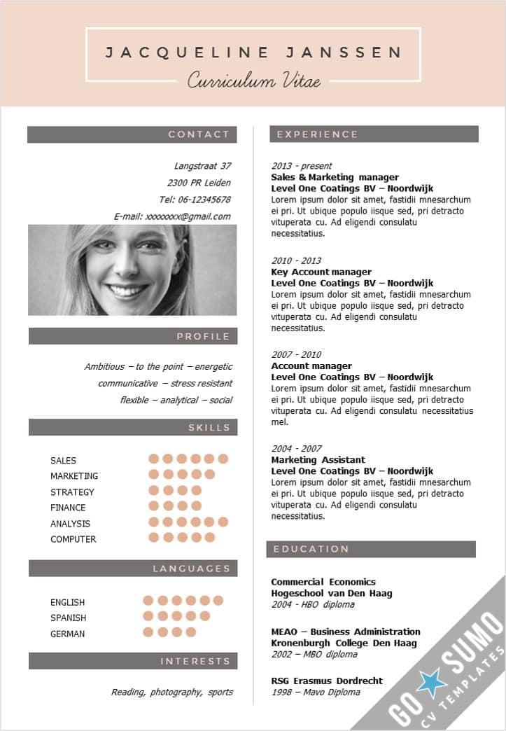 CV Template New York - Go Sumo cv template