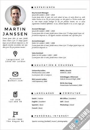 CV-template-Antwerp-300x433jpg (300×433) mise en page - it cv template