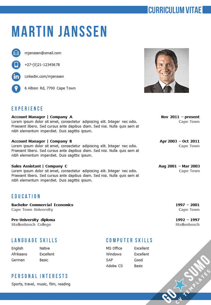 professional cv format in word