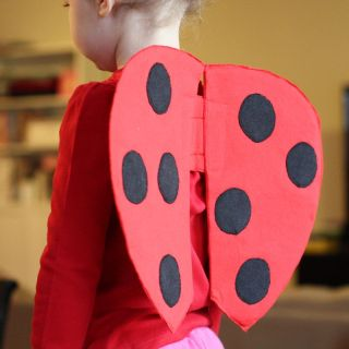 Featured: DIY Ladybug Wings