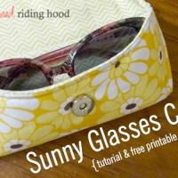 Sunny Glasses Case