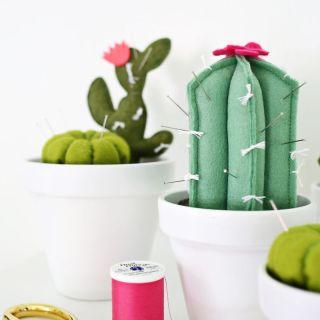 Cactus Pincushion