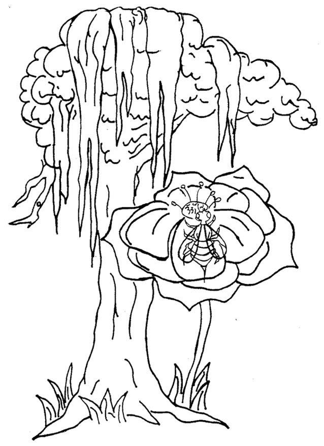 Coloring Pages Office of the Governor of Louisiana