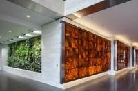 Backlit Wood Veneer Panels   Feature Walls   National ...