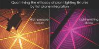 Plant Lighting Efficiency and Efficacy: mols per joule ...