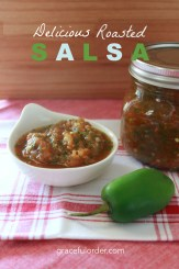 Roasted Salsa Cover