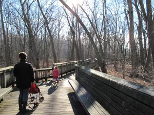 Nature walk with Miss M at Wegerzyn Gardens Metropark