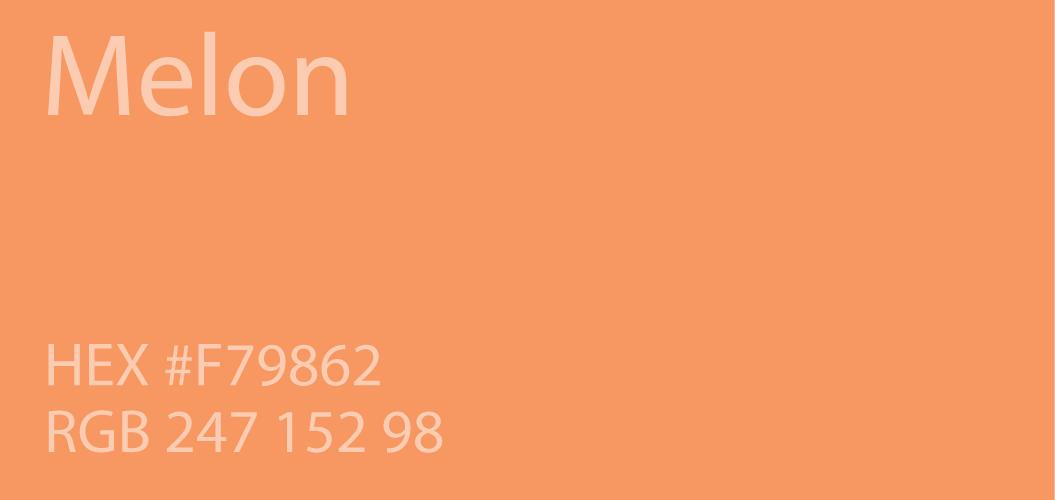 Neon Orange Paint Color Code Paint Color Ideas