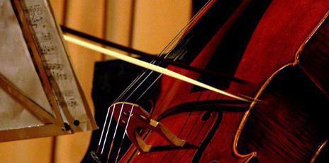 audiciones violoncello