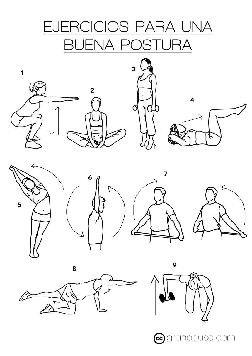 Ejercicios para mantener una buena postura gran pausa for Sillas para una buena postura