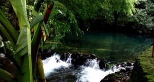URUAPAN Aumentó afluencia turística al Parque Nacional de Uruapan (3)