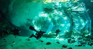 cenotes-riviera-maya