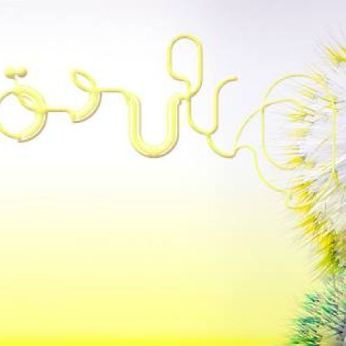 Björk's Vulnicura Number 1 In 30 Countries