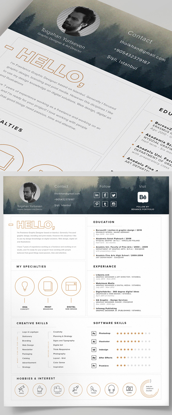 cv psd free graphic