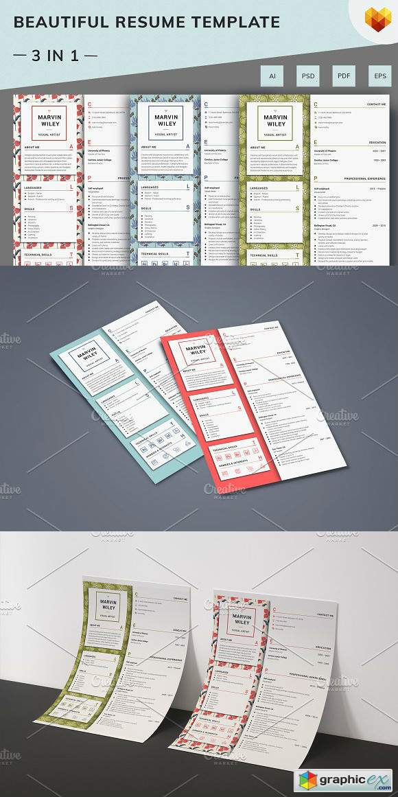 Visual Artist Resume Template » Free Download Vector Stock Image