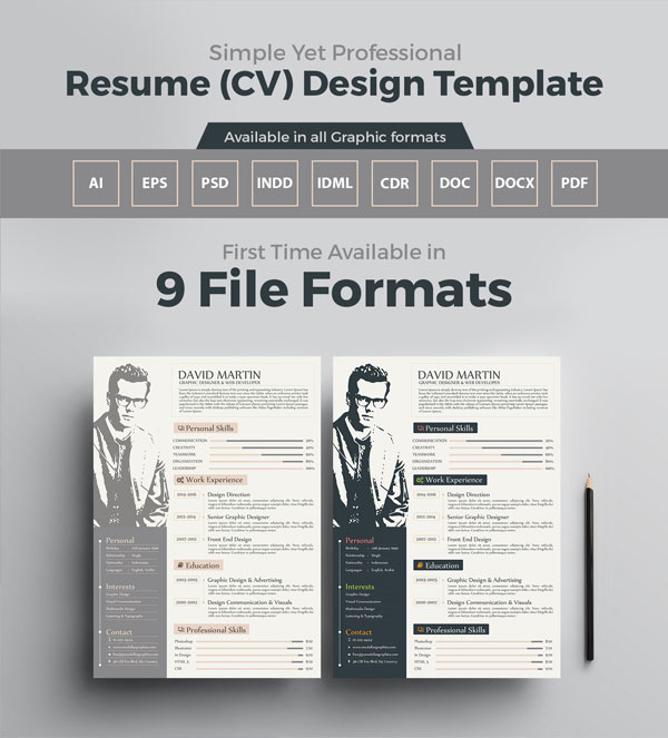 extremely simple yet graphic cv