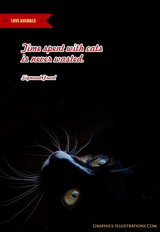 Animal Shelter Poster Design