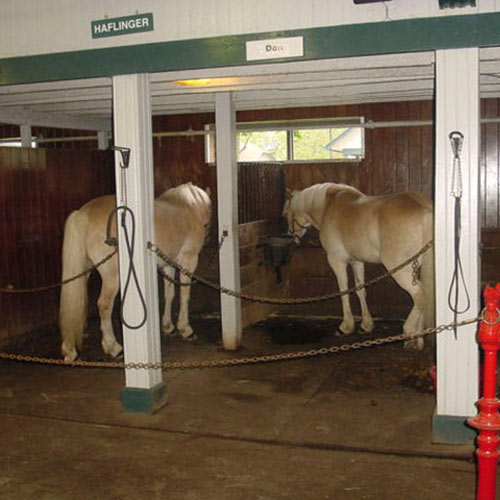 Black Wood Grain Wallpaper Rubber Horse Stall Mats Custom Interlocking Horse Stall Mats