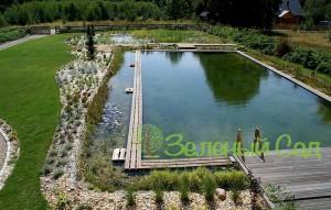 Декоративный пруд для плавания