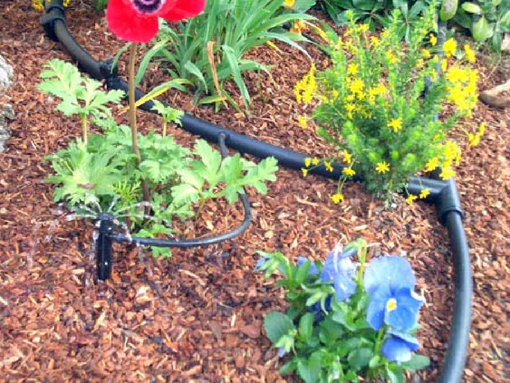 Drip Irrigation Parts u2013 Green Acres Vista - garden irrigation design