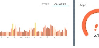 Fitbit Flex Review: Telling me I don't move enough. Duh. #Health #fitness #kickinthepants
