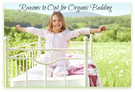 The benefits of choosing organic bedding.