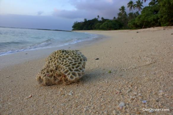 Beach in Eua Island, Tonga