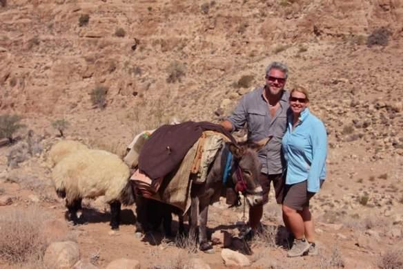Donkey in Dana Biosphere Reserve, Jordan