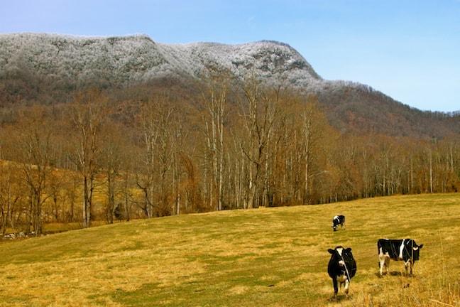 Ecotourism in Asheville, North Carolina