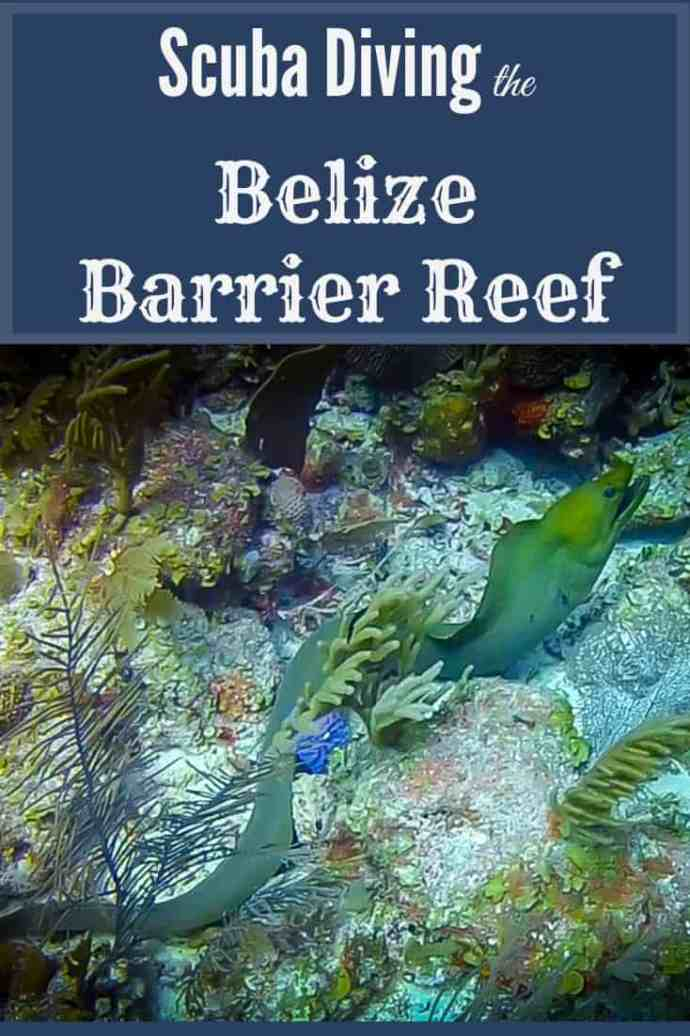Scuba Diving the Belize Barrier Reef