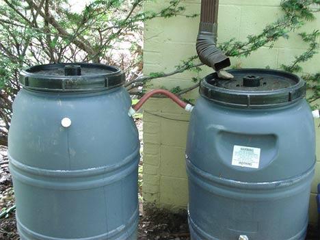 Go green tip 97 diy rainwater harvesting tips for Making rain barrel system