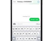 greenjoy sms