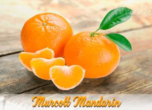 Murcott mandarin