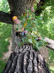 ClimbingTrees2