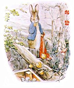 peter rabbit high rez