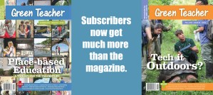 subscribersfall