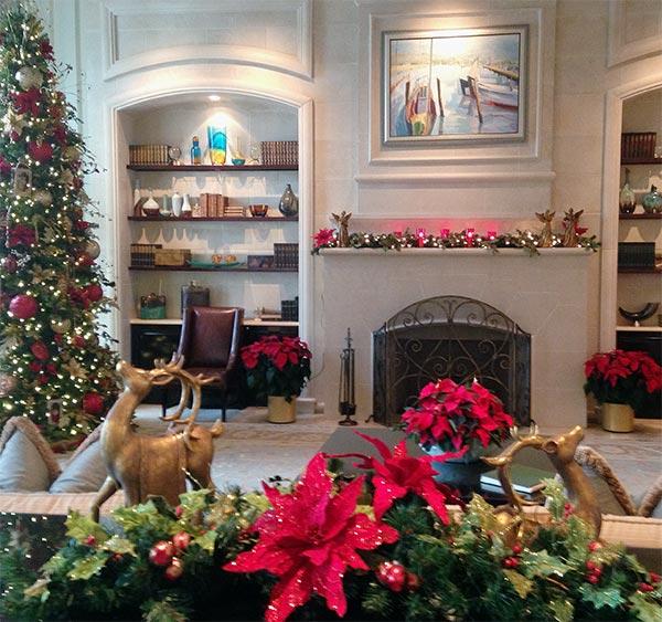 holiday plant service in orlando florida green thumb interior