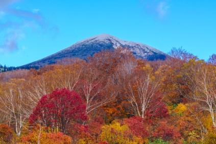 sukayu_autumn