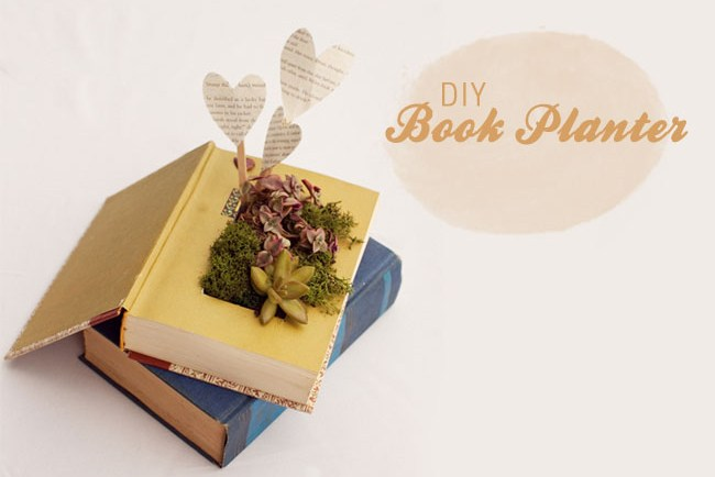 DIY book planter with succulents