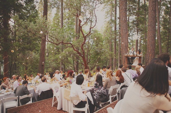 Fall Wooded Wallpaper A Handmade Wedding In The Woods Christine Ian Green