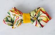 bow-tie-sm
