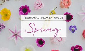 spring_flower_guide_SM