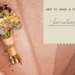 succulent-flowers-intro