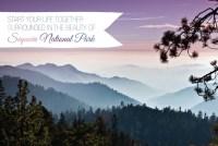 sequoia wedding