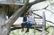 treehouse engagement