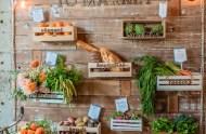 vegetable wall