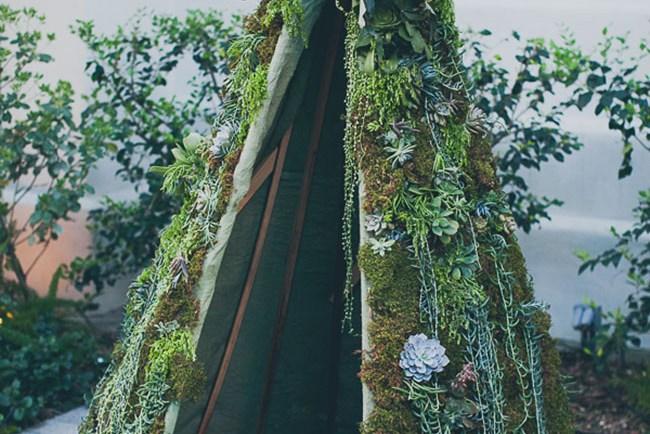 succulent teepee