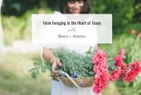 Farm Foraging in Texas