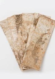 birch_bark_strips